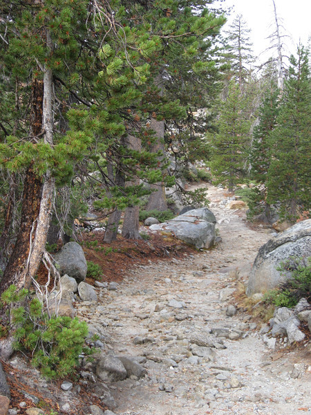 We walked down Slick Rock Trail to Duck Creek Bridge.  This is actually quite a steep downhill, but pictures never really show that well.