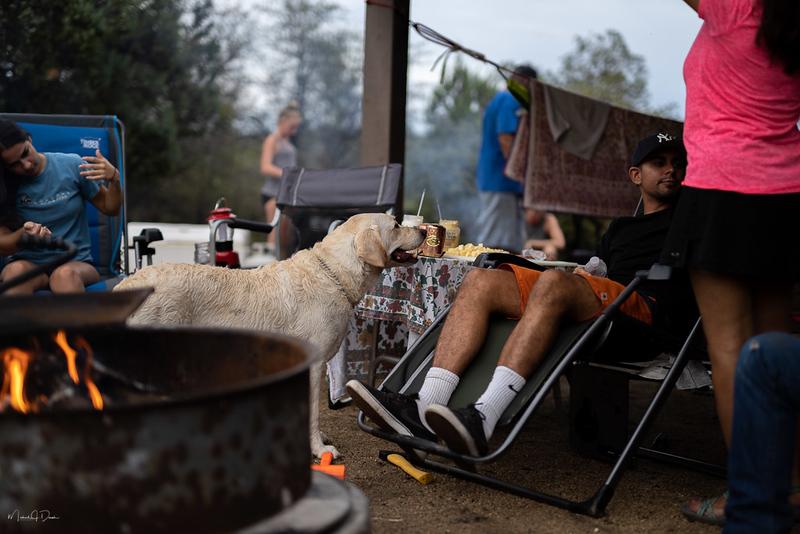 Camping-140
