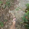 Flip Flop Hiker