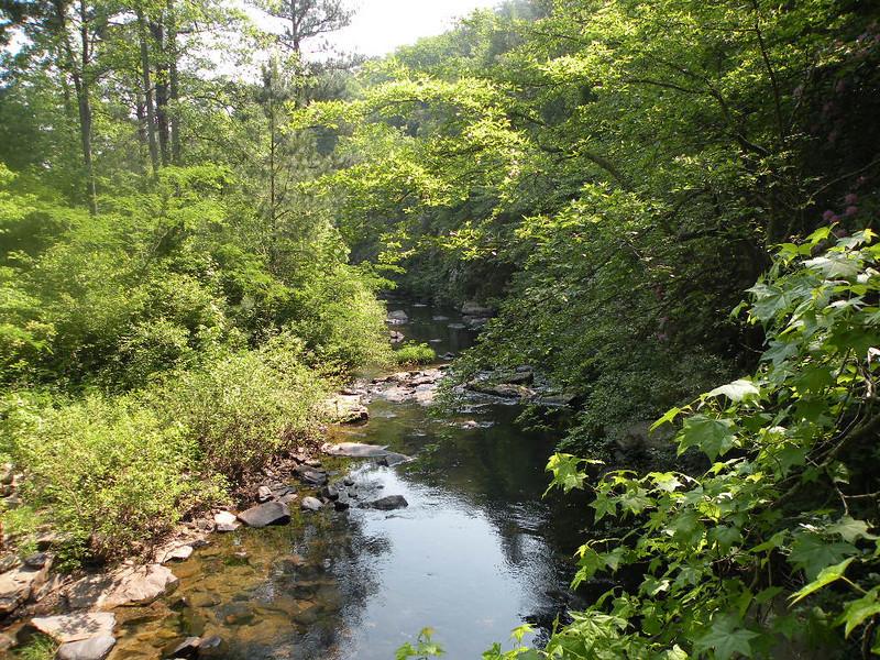 Upstream on Rock Creek