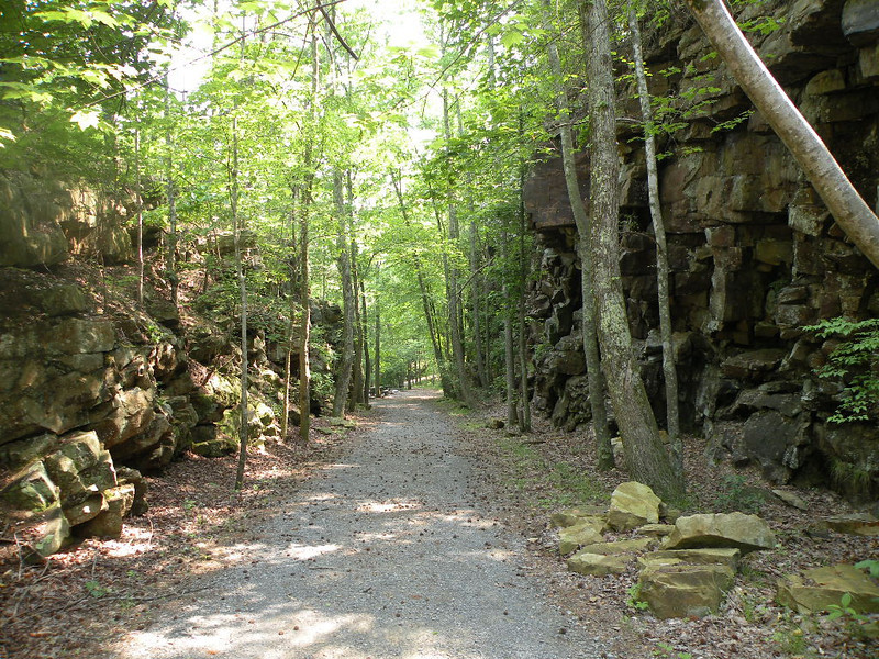Trail to Lula Falls. It is an old railroad grade.