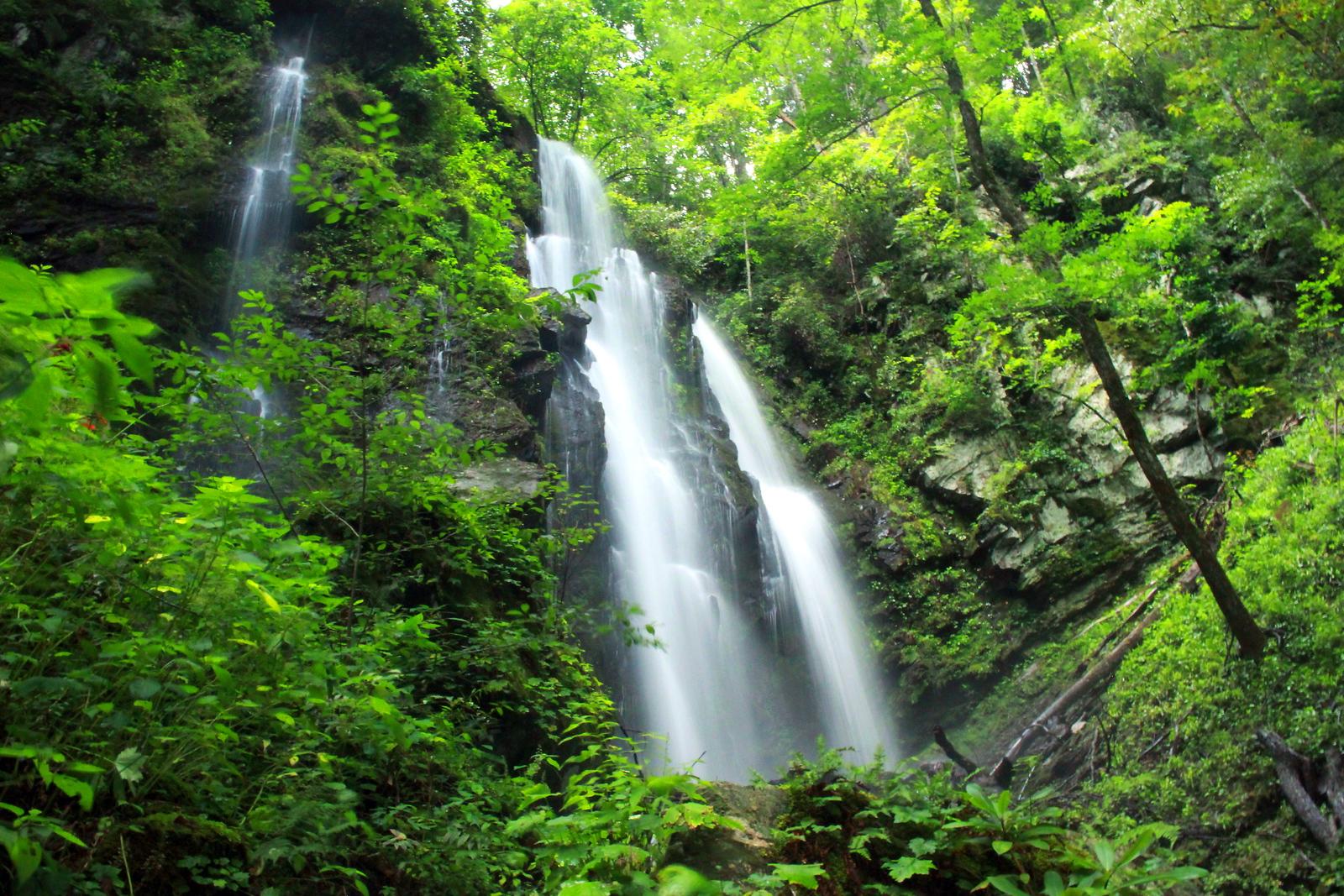Lee Falls BV High Flow