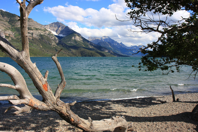 Waterton Campsite Lakeshore