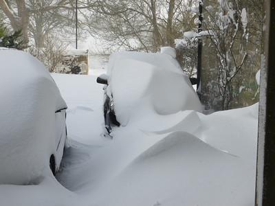 Snow storm in Campsie Glen