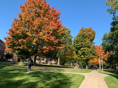 Campus Green in Fall
