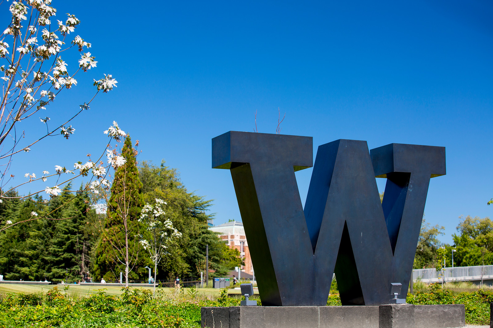 W Located on Rainier Vista. Photo by Dennis Wise.