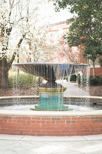 Campus Beauty, Fountain