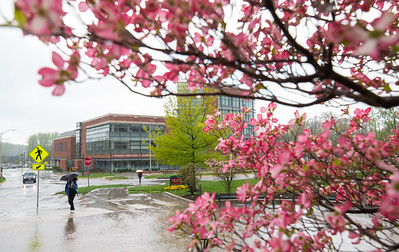 Fairfax Spring Campus