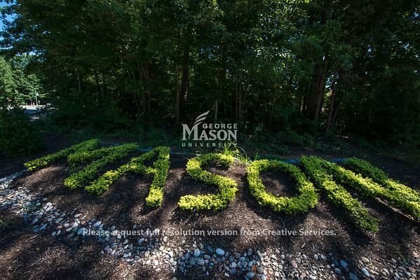 Mason Bush