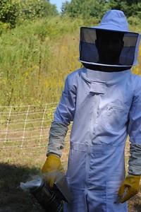 2015-16 Honey Bees