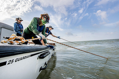 Danielle Zimmermann and Desiree Corbiere pull in oyster dredge at their oyster reef research site in Aransas Bay.