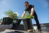 """Zane Miller from UAA Facilities and Maintenance unloads trees with the horticulture team in front of the ConocoPhillips Integrated Science Building in preparation for a belated Arbor Day volunteer tree-planting event to honor UAA's 10 years as a certified Arbor Day Foundation Tree Campus.  <div class=""""ss-paypal-button"""">190614-ARBOR DAY TREE PLANTING-JRE-0118.jpg</div><div class=""""ss-paypal-button-end""""></div>"""