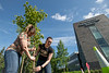 """Nicole Brugliera, left, and Lisa Thayer, right, help plant trees in front of the ConocoPhillips Integrated Science Building during a belated Arbor Day volunteer tree-planting event to honor UAA's 10 years as a certified Arbor Day Foundation Tree Campus.  <div class=""""ss-paypal-button"""">190614-ARBOR DAY TREE PLANTING-JRE-0389.jpg</div><div class=""""ss-paypal-button-end""""></div>"""