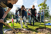 """Chancellor Cathy Sandeen joins volunteers as they plant trees in front of the ConocoPhillips Integrated Science Building during a belated Arbor Day volunteer tree-planting event to honor UAA's 10 years as a certified Arbor Day Foundation Tree Campus.  <div class=""""ss-paypal-button"""">190614-ARBOR DAY TREE PLANTING-JRE-0459.jpg</div><div class=""""ss-paypal-button-end""""></div>"""