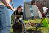 """Lisa Thayer helps plant trees in front of the ConocoPhillips Integrated Science Building during a belated Arbor Day volunteer tree-planting event to honor UAA's 10 years as a certified Arbor Day Foundation Tree Campus.  <div class=""""ss-paypal-button"""">190614-ARBOR DAY TREE PLANTING-JRE-0397.jpg</div><div class=""""ss-paypal-button-end""""></div>"""