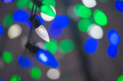 121416_ChristmasLights-2929