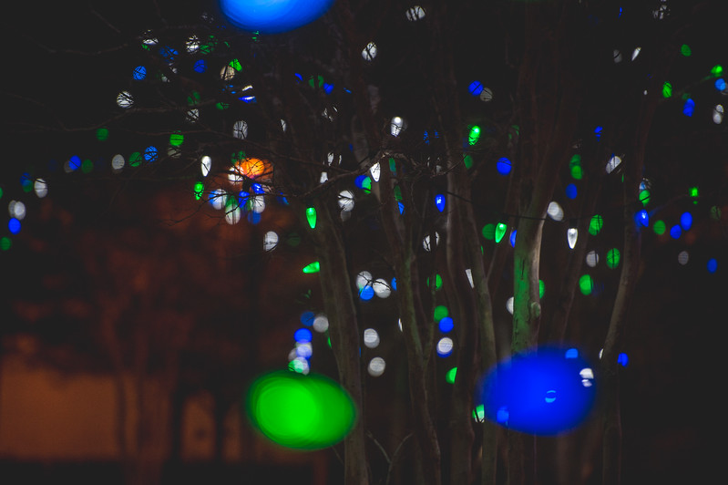 121416_ChristmasLights-2932