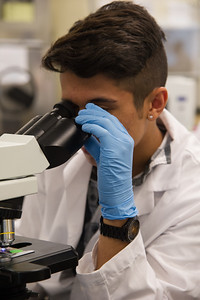 Student Jacobb Vela identifies bacteria using a microscope during a lab.