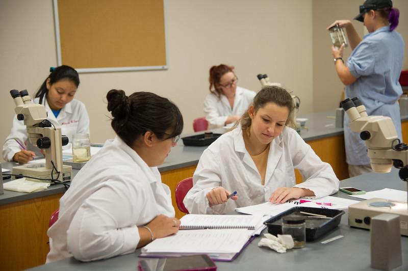 Marissa Lynn Esquivel and Mailey Kisen work together on identifying Amphibians.