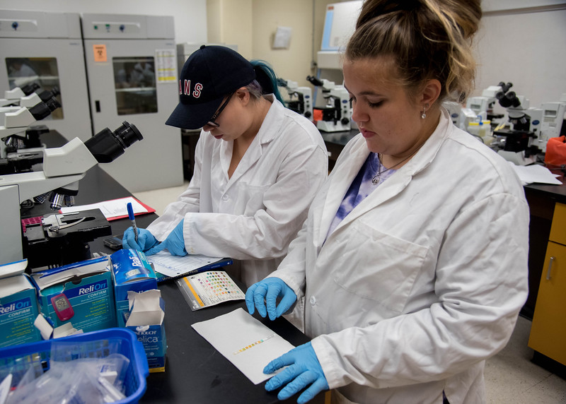 Students Denise Garza and Alysa McBride work on a lab assignment.