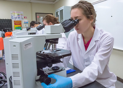 Student, Brenna Schulze, concentrates on her lab work in microbiology class located in the CS building.