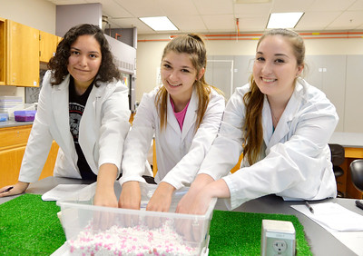 Student Adrey Czarza(left), Tayryn Portanova and Scarlett Dunmire work together on Hardy Weinbeng simulation in Biology lab.