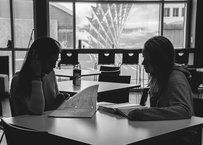 Students Renee Gonzalez(left) and Alexandra Davis study in the dining hall.