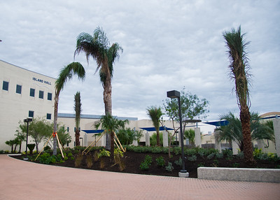 The area outside of Island Hall receives some sprucing up as new plants and trees are added.