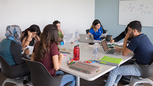 Students collaborate on a project in a study room in the O'Connor building.