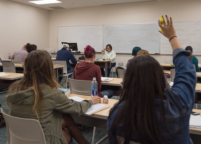 Dr. Cartenson calls on her students to share thoughts and ideas during their Expressive Writing and the Journal course.