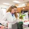 Jenna M. Carpenter (left) and Cindy Wainikainen work during their lab in Plant Form and Function.