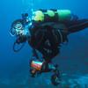 marine-biology_25695946291_o