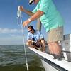 dr-mike-wetzblue-associate-professor-of-marine-biology-testing-water-quality_15805474078_o