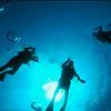 3-diver-high_7222782472_o