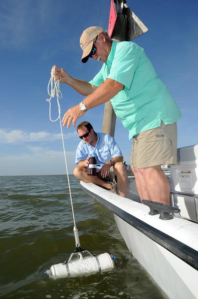 dr-mike-wetzblue-associate-professor-of-marine-biology-testing-water-quality_25695946911_o