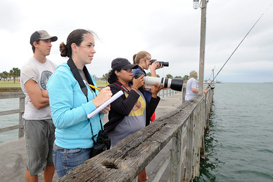 students-in-a-marine-biology-class-photograph-dolphins-spotted-in-port-aransas_10444705304_o