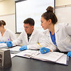 Corine Kuhlman (left), Ryan Rodriguez, and Kenzle Roan break down bacterias to different categories in their Principles of Microbiology course.