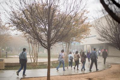 Islander Students make their way to their next class, walking through Lee Plaza.