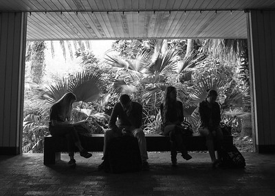 Students take a break at the spine, during the power outage.