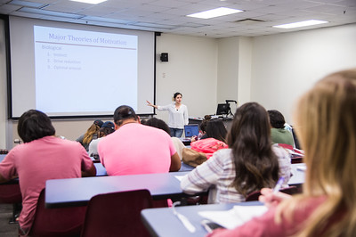 Dr. Mills lectures her students on the theory of Motivation.