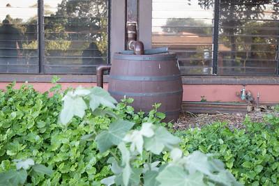 Rain Garden Water Collection Barrel