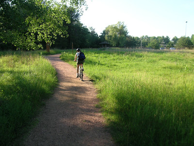 University Trail through Schmeeckle Reserve prairie