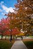 Fall campus scenes