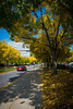Fifth Street in fall