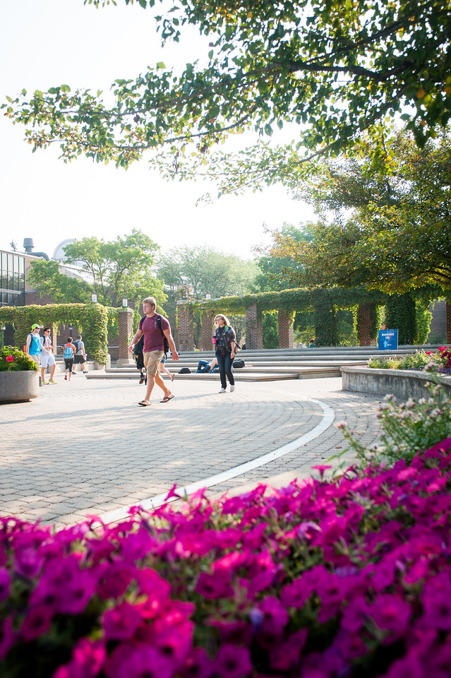 Summer campus scenes 2013