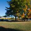 Fall On the Uptown Campu