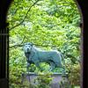 Library Quad lion 5.24.12