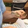 Bird_banding-9-13-2012_IMG_1533
