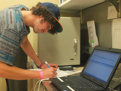 Chris Geany '14 is analyzing flow-through respirometry data to determine the metabolic rate and gas exchange characteristics of an adult female mosquito.  (Lab: Emilie Gray, assistant professor of biology)