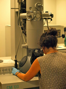 Grete Wilt '14 is adjusting the Scanning Electron Microscope in order to observe wax pores on the cuticle of a female mosquito. (Lab: Emilie Gray, assistant professor of biology)